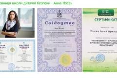 Анна носач диплом